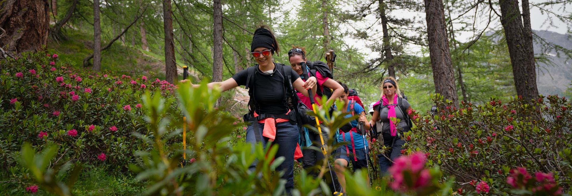 Trekking dei laghi del Mont Avic